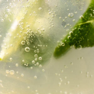 Cocktail gin tonic di PaninoLAB